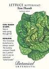 Lettuce Butterhead Tom Thumb HEIRLOOM Seeds