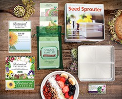 Spectacular Sprouts Gift Set