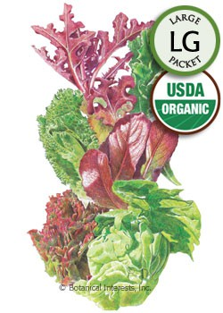 Lettuce Mesclun Gourmet Baby Greens Organic HEIRLOOM Seeds (LG)