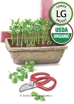 Microgreens Peas for Shoots Organic HEIRLOOM Seeds (LG)