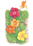 Nasturtium Trailing Single Blend HEIRLOOM Seeds