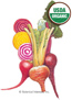 Beet Gourmet Blend Organic HEIRLOOM Seeds