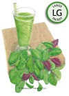 Baby Greens Smoothie Mix Seeds (LG)